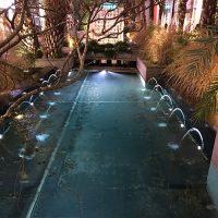 spot led aquatique dragonnet