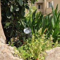 spot lyre led minilight paysage plante