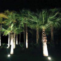Prjecteur led encastré sol ROYA palmiers